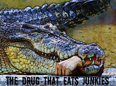 Kábítószer-használók társkereső oldal