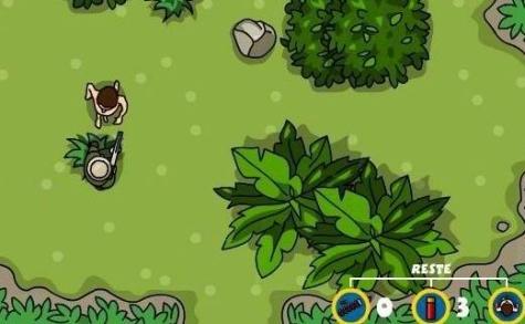 Dzsungel homoszexuális videó
